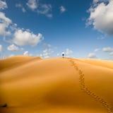 Het lopen in woestijn Stock Afbeeldingen