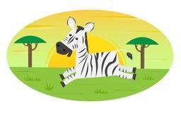 Het lopen Zebra Royalty-vrije Stock Foto