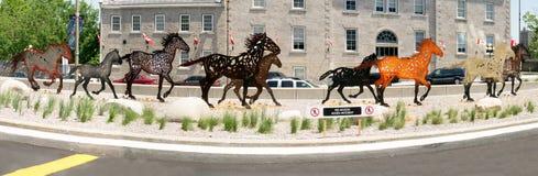 Het lopende Beeldhouwwerk van Paarden, Ottawa, Ontario, Canada Royalty-vrije Stock Foto's