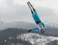 Het lucht ski?en Royalty-vrije Stock Fotografie