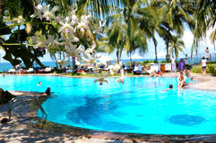 Het luxehotel met zwembad en van de orchidee bloemen Royalty-vrije Stock Foto