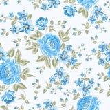 Het luxueuze patroon van de kleurenpioen. royalty-vrije illustratie