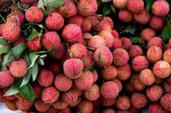 Het lycheefruit voor handel, verkoopt, ontwerpt stock afbeelding