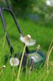 Het maaien van gras stock afbeelding