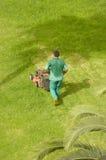 Het maaiende gras van de mens Stock Afbeeldingen