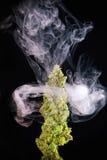 Het macrodetail van enige cannabis ontluikt groene strai van de barstmarihuana Stock Fotografie