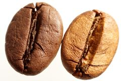 De macro van de Bonen van de koffie Stock Afbeeldingen