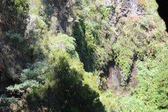 Het magische eiland van La Palma stock afbeeldingen