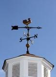 Het magnetische kompas van de kippenstijl Stock Fotografie