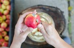 Het maken van appelazijn - scène van bovengenoemd - de appelen van de handschil royalty-vrije stock fotografie