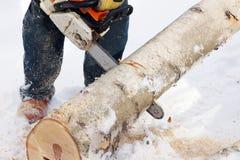 Het maken van brandhout Royalty-vrije Stock Afbeeldingen