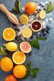 Het maken van citrusvrucht smoothies en dranken royalty-vrije stock fotografie