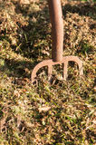Het maken van Compost Stock Afbeelding