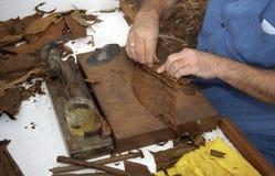 Het maken van de sigaar Stock Fotografie