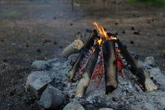 Het maken van een brand in de campagne, expeditie Royalty-vrije Stock Afbeeldingen