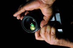 Het maken van foto's royalty-vrije stock foto