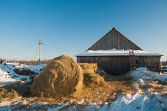 Het maken van hooi op landbouwbedrijf in de winter op ochtend royalty-vrije stock afbeeldingen