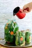 Het maken van ingelegde komkommers Royalty-vrije Stock Afbeeldingen