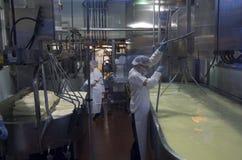 Het maken van kaas Royalty-vrije Stock Afbeeldingen