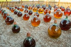 Het maken van natuurlijke zoete de likeur witte wijn van de dessertmuscateldruif buiten in de grote ronde flessen van de glas ant stock foto