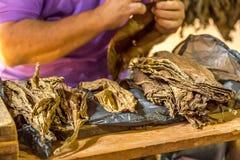 Het maken van sigaren in Vinales, Cuba #3/21 Royalty-vrije Stock Afbeeldingen