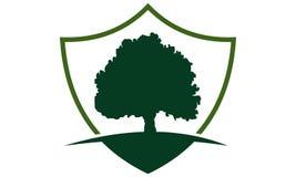 Het Malplaatje van het boomschild Stock Afbeelding