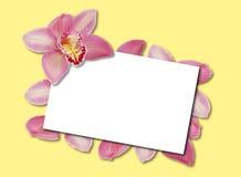 Het Malplaatje van de orchidee Stock Afbeelding