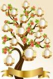 Het malplaatje van de stamboom Stock Fotografie