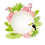 Het malplaatje van het de zomerontwerp Tropische bladeren, toekan en flamingo vectorillustratie Royalty-vrije Stock Foto's