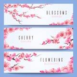 Het malplaatje van huwelijksbanners met sakura van de lentejapan, kersenbloesem royalty-vrije illustratie