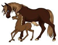 Het mamma en de baby van het paard stock illustratie