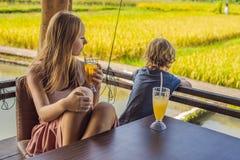 Het mamma en de zoon drinken dranken in een koffie van het rijstterras, Bali, Ubud royalty-vrije stock fotografie