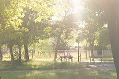 Het mamma en de zoon zitten op een bank in een park met een fiets op een zonnige dag Stock Afbeeldingen