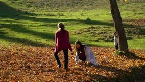 Het mamma en haar kinderen hebben pret in het de herfstbos zij springen en bladeren in de lucht werpen Zij lachen E stock footage