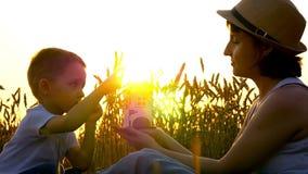 Het mamma en het kind op een tarwegebied houden en roteren een stuk speelgoed molen tegen de achtergrond van de zonsondergang stock videobeelden