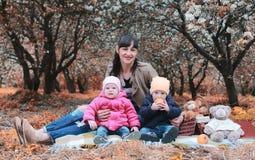 Het mamma van het de herfstpark met tweelingen op plaid openlucht in appeltuin Stock Fotografie