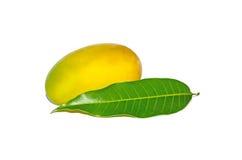 Het mangofruit voor isoleerde de achtergrond Stock Fotografie