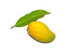 Het mangofruit voor isoleerde de achtergrond Royalty-vrije Stock Afbeelding