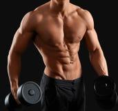 Het mannelijke bodybuilder stellen in studio Royalty-vrije Stock Foto