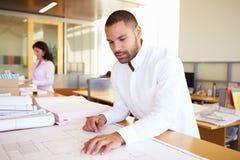 Het mannelijke Bureau van Architectenstudying plans in Stock Afbeeldingen