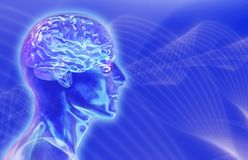 Het Mannelijke Hoofd van het glas met Hersenen op Achtergrond Brainwaves Royalty-vrije Stock Afbeeldingen