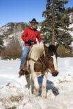 Het mannelijke horseback berijden. Royalty-vrije Stock Fotografie