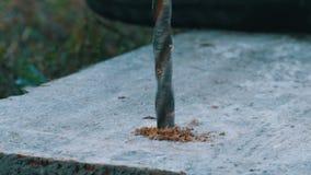 Het mannelijke hout van de handboring met handboringsmachine in openlucht in de de herfst dichte omhooggaande mening stock footage