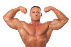Het mannelijke lichaamsbouwer aantonen stelt, geïsoleerd Stock Afbeeldingen