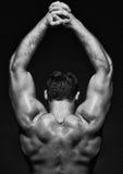 Het mannelijke model van de spier Stock Afbeeldingen
