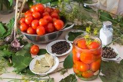Het marineren van tomaten met ingrediënten Royalty-vrije Stock Afbeelding