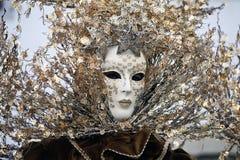 Het masker en de kostuums van Carnaval Stock Afbeeldingen