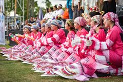Het Masker Roze internationale Festival 2018 royalty-vrije stock foto's