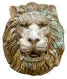 Het masker van de leeuw. royalty-vrije stock afbeeldingen