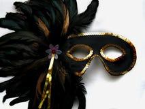 Het Masker van Gras van Mardi Royalty-vrije Stock Fotografie
